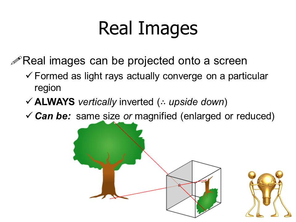 Real Images Real images can be projected onto a screen