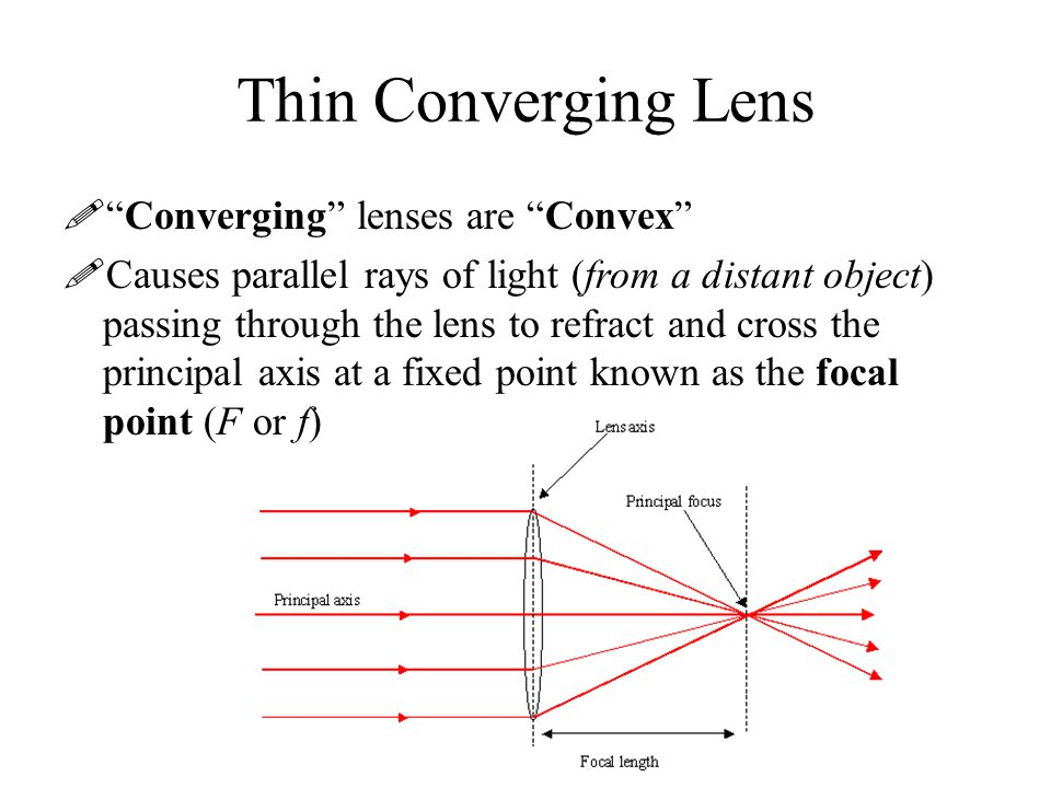 Thin Converging Lens Converging lenses are Convex
