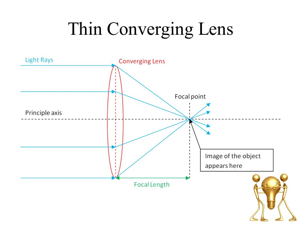 Thin Converging Lens Note: Converging lens is thicker in the middle than along its edge. A.K.A. Convex lens.