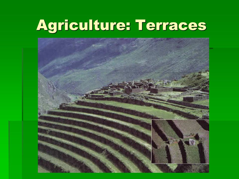 Agriculture: Terraces