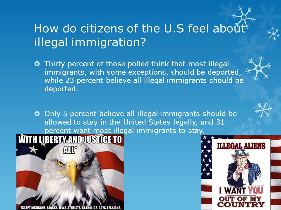 should illegal immigrants stay in the us