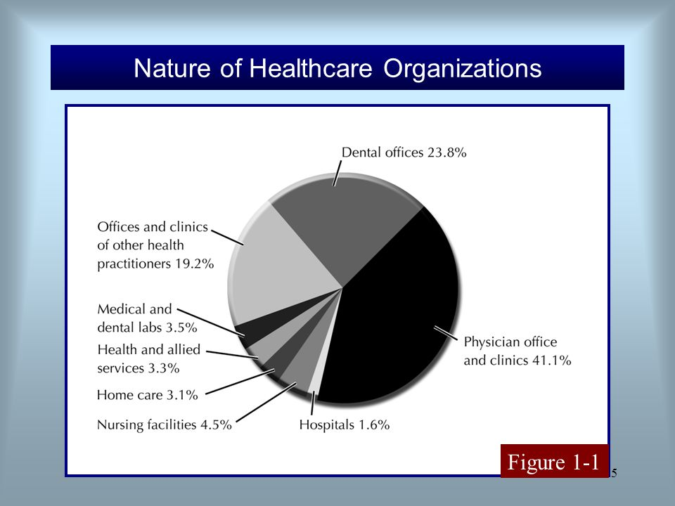 Nature of Healthcare Organizations