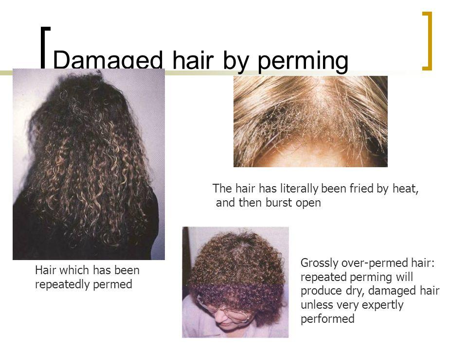 Perm Neutralising Hair Unit Ppt Video Online Download