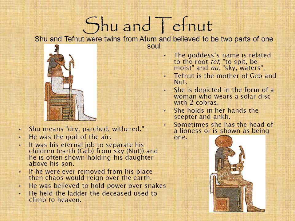Shu and Tefnut Shu and Tefnut were twins from Atum and believed to be two parts of one soul.
