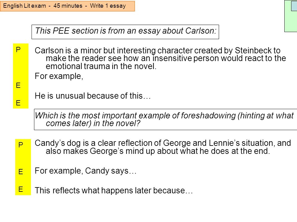 candy essay