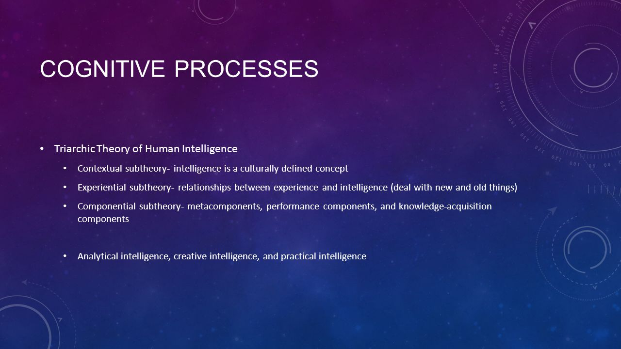 Cognitive processes Triarchic Theory of Human Intelligence