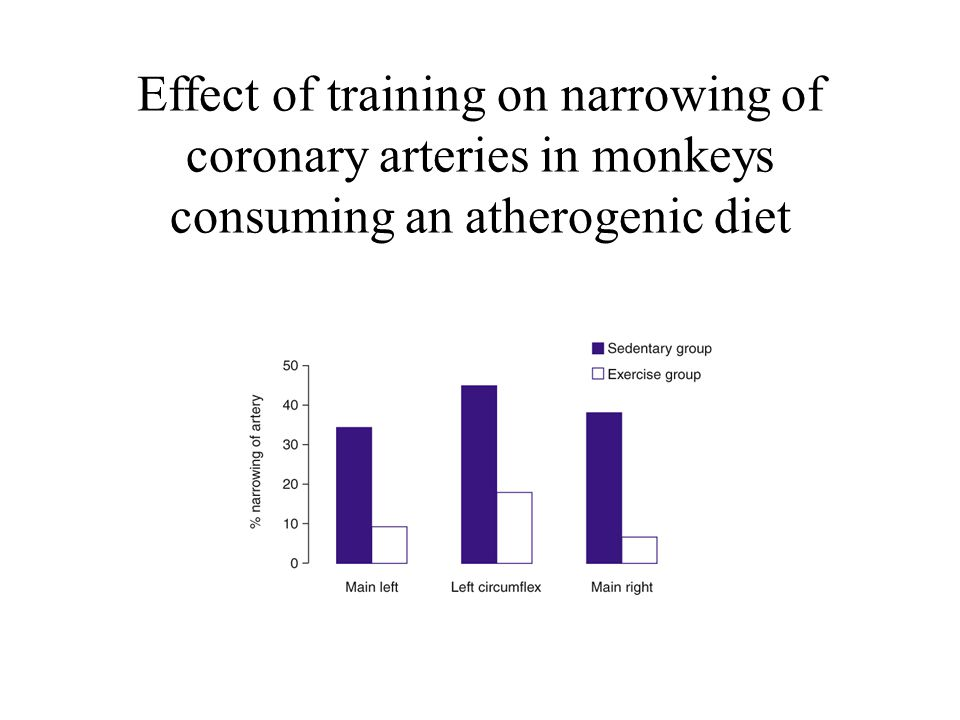 Effect of training on narrowing of coronary arteries in monkeys consuming an atherogenic diet