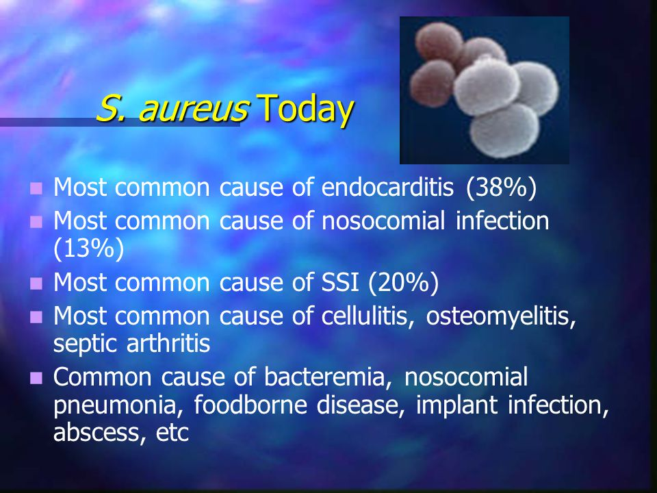 people are dying from methicillin resistant staphylococcus Overview during the past four decades, a type of bacteria has evolved from a controllable nuisance into a serious public health concern this bacterium is known as methicillin-resistant staphylococcus aureus, or mrsaabout one-third of people in the world have s aureus bacteria on their bodies at any given time, primarily in the nose and on the skin.