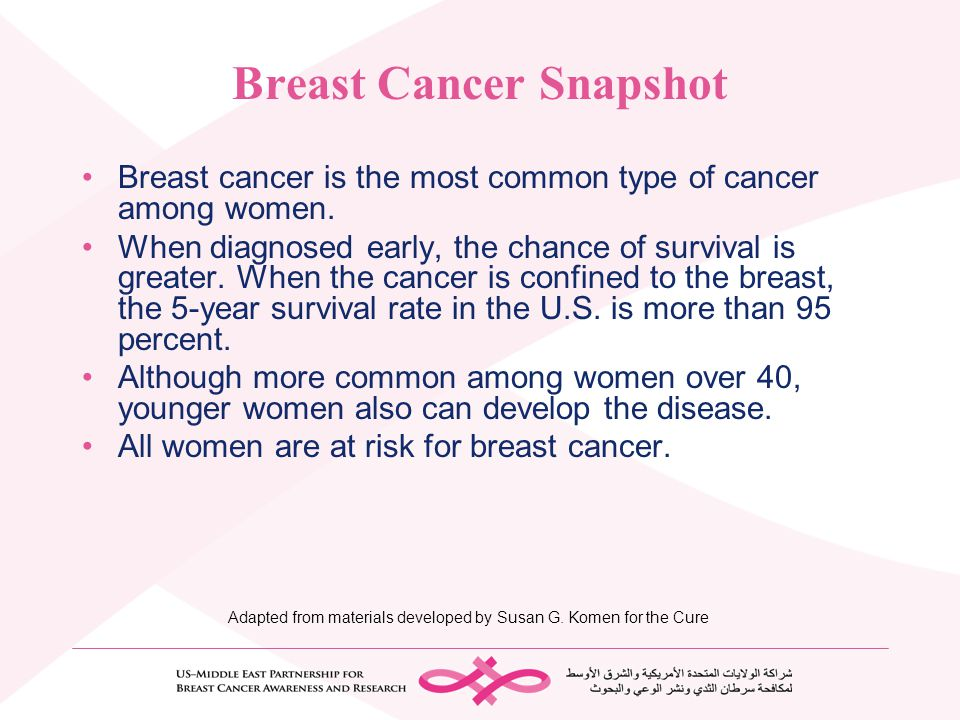 Breast Cancer Snapshot