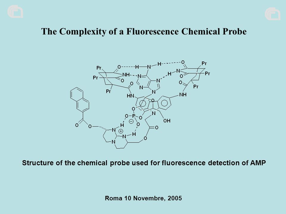 The Complexity of a Fluorescence Chemical Probe