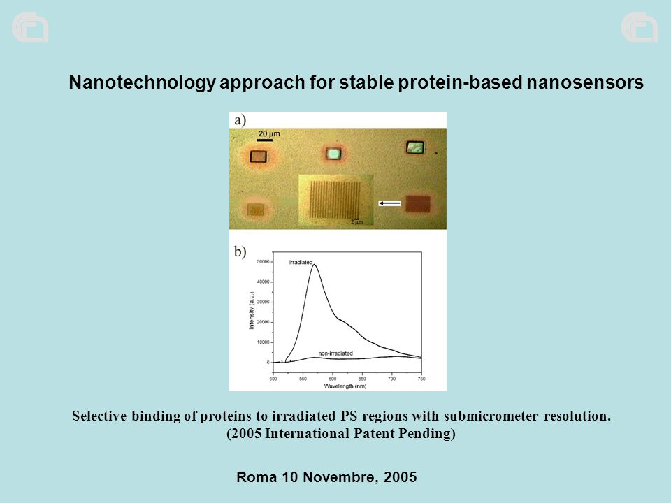 Nanotechnology approach for stable protein-based nanosensors