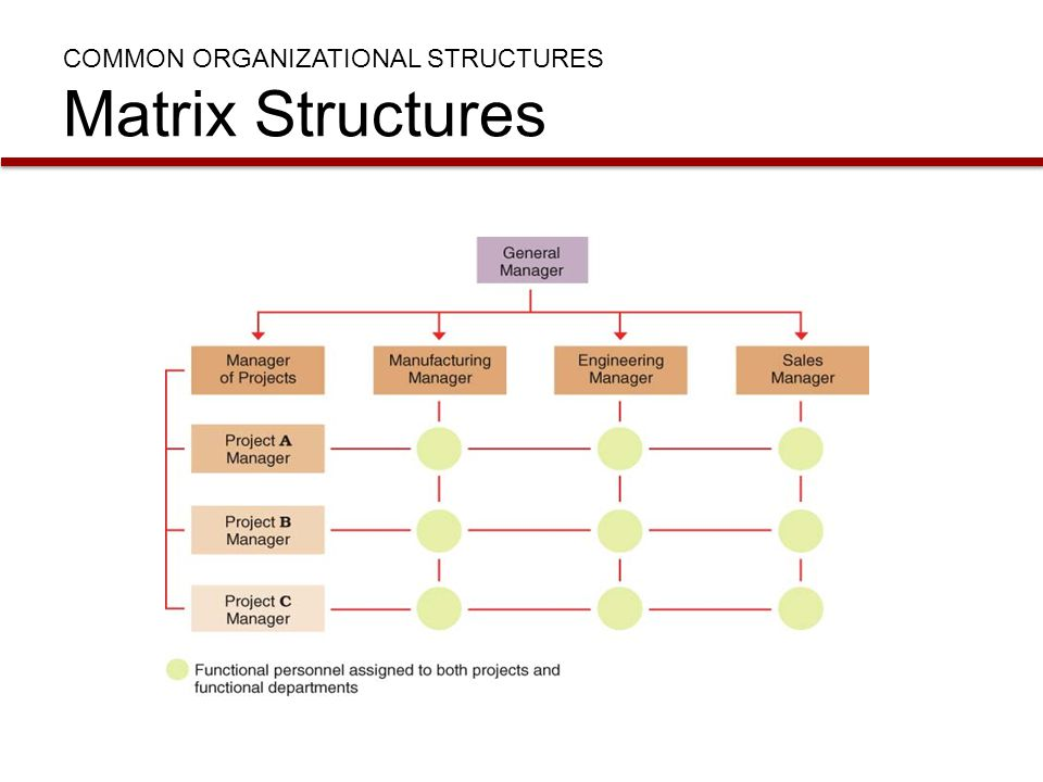 COMMON ORGANIZATIONAL STRUCTURES Matrix Structures