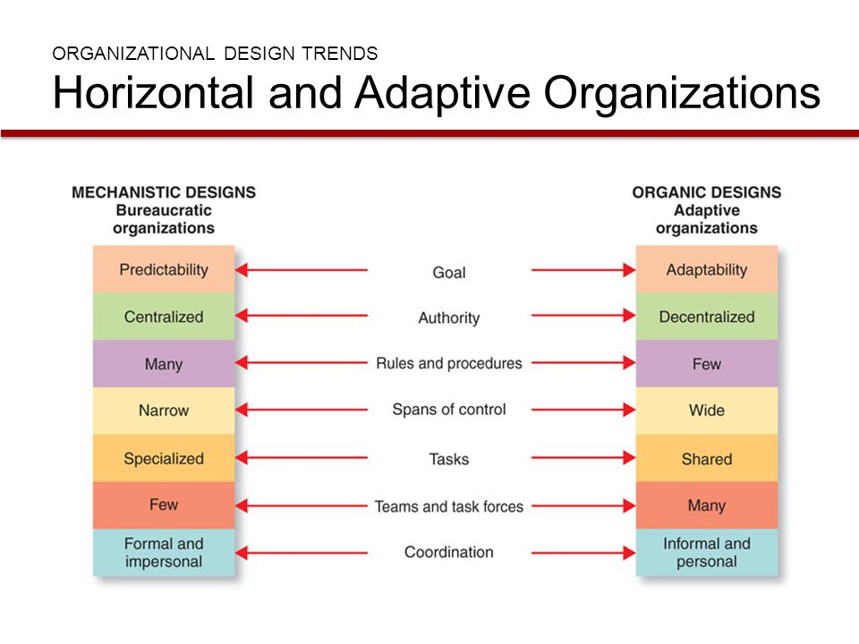ORGANIZATIONAL DESIGN TRENDS Horizontal and Adaptive Organizations