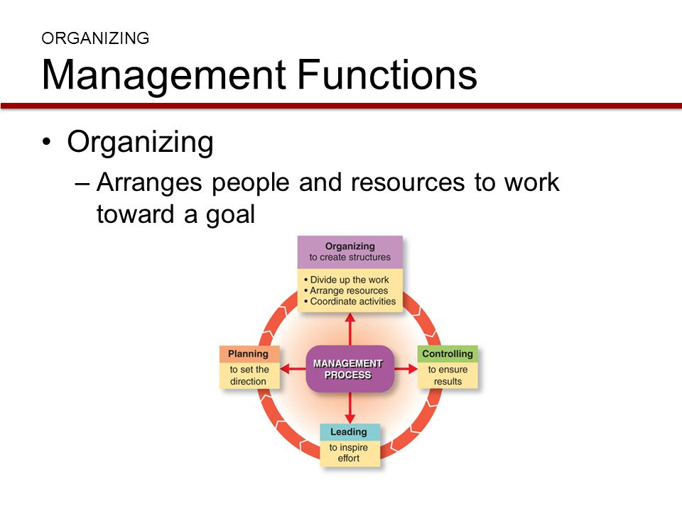 ORGANIZING Management Functions