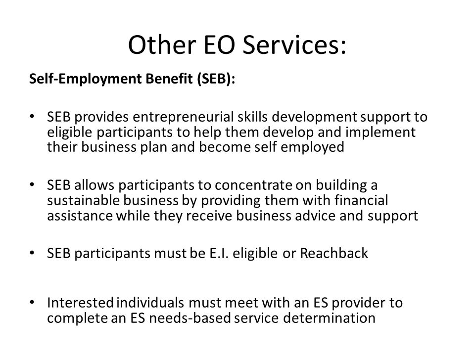 Other EO Services: Self-Employment Benefit (SEB):