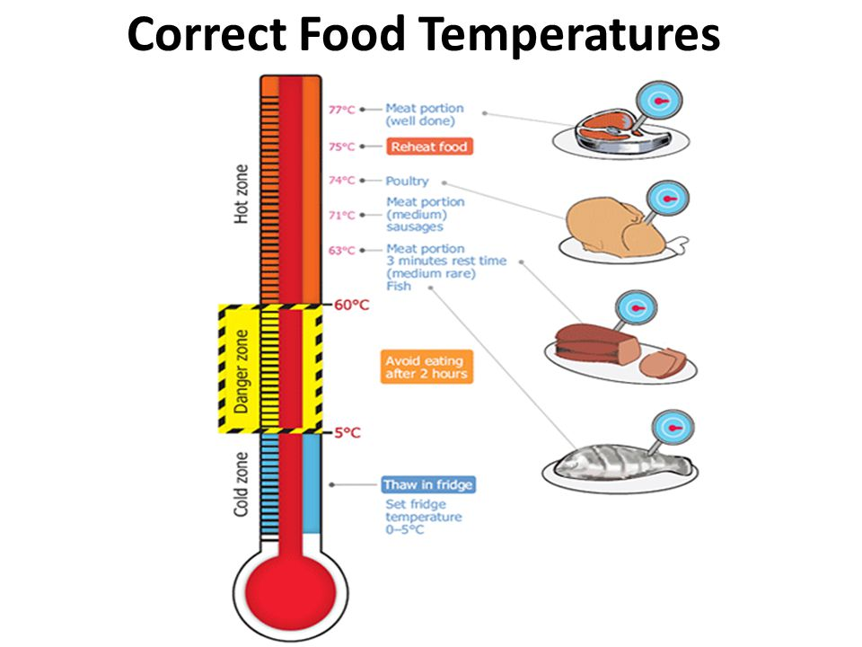 How To Check Food Is Stored At The Correct Temperature