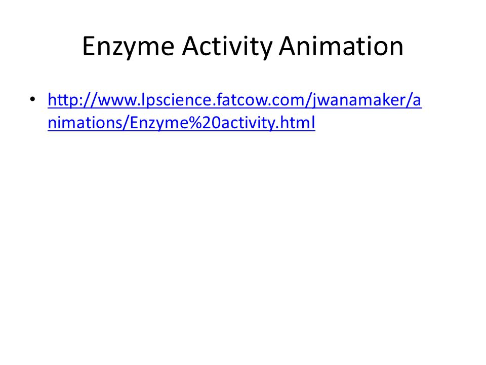 Enzyme Activity Animation