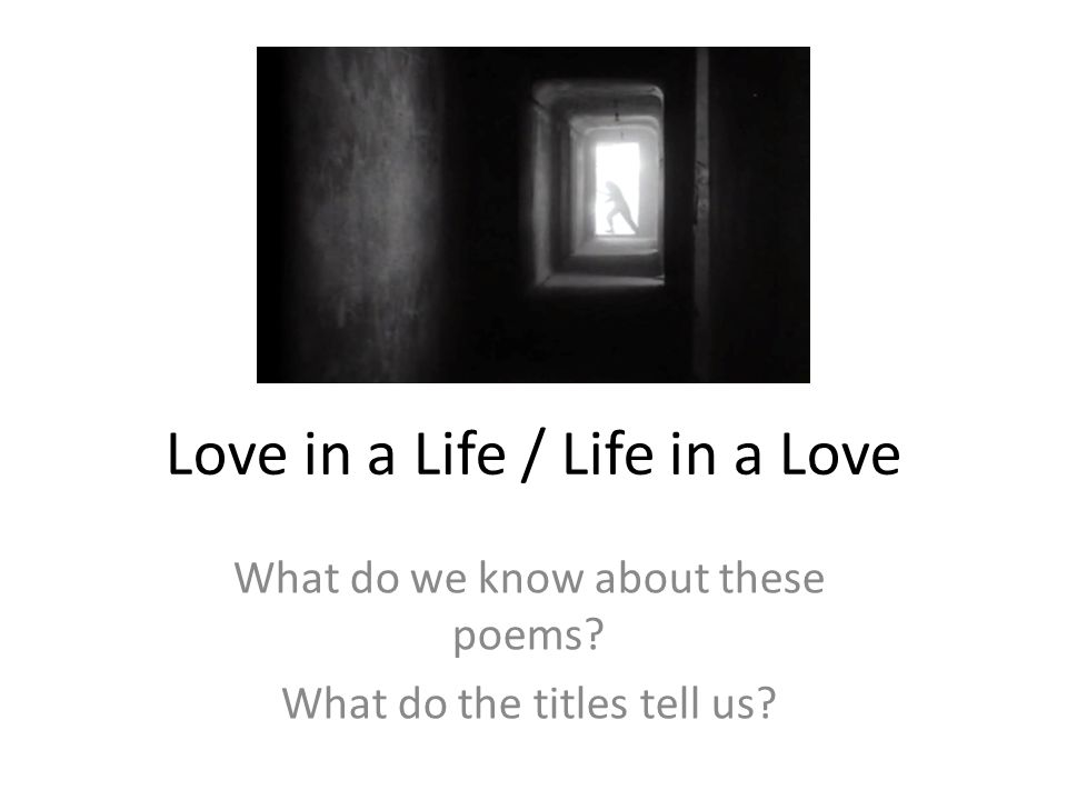Love in a Life / Life in a Love - ppt download