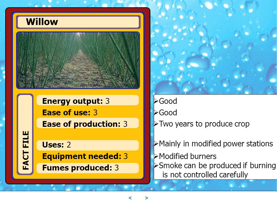 Willow Energy output: 3 Ease of use: 3 Ease of production: 3 Uses: 2