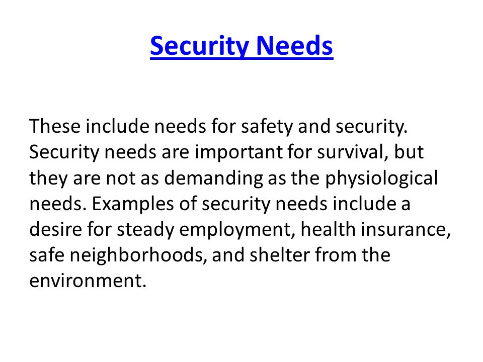Security Needs