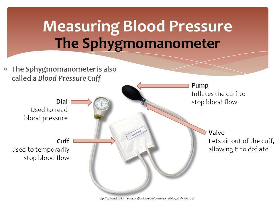 blood pressure cuff diagram
