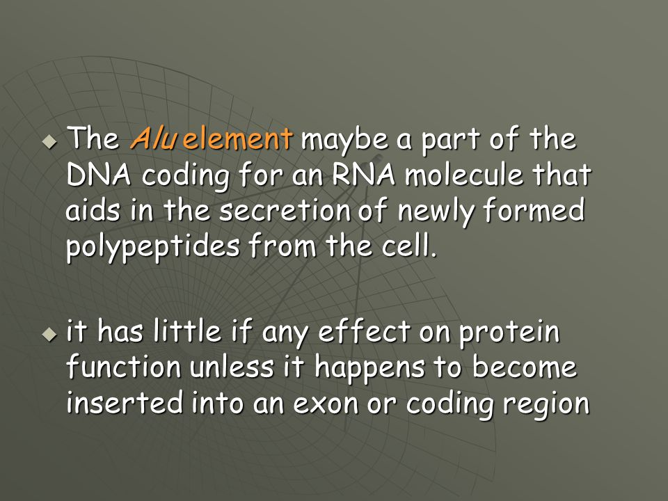 The Alu element maybe a part of the DNA coding for an RNA molecule that aids in the secretion of newly formed polypeptides from the cell.