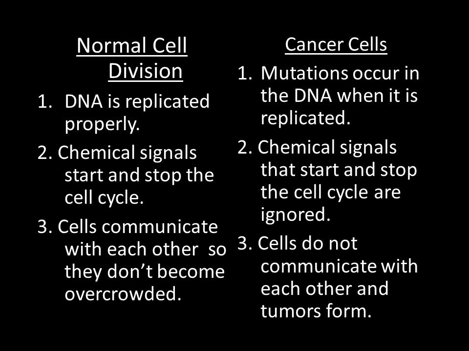 Normal Cell Division Cancer Cells