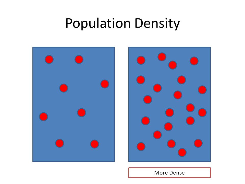 Population Density More Dense