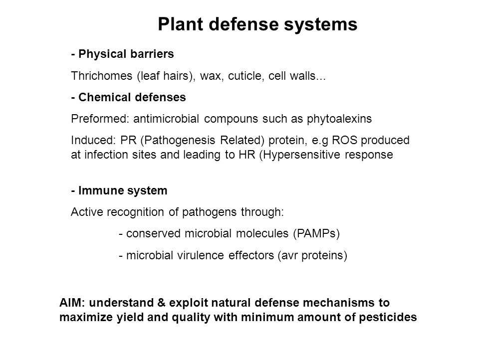 Plant defense systems - Physical barriers