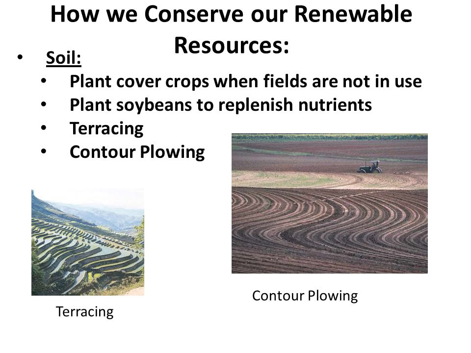 How we Conserve our Renewable Resources: