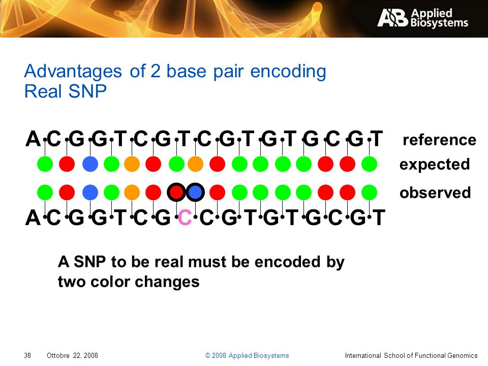 Advantages of 2 base pair encoding Real SNP