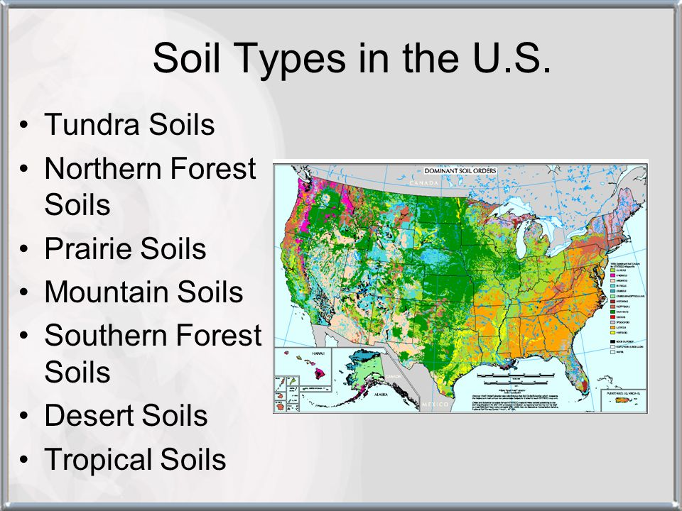 Soil Types in the U.S. Tundra Soils Northern Forest Soils