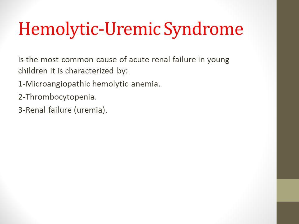 Renal System Lec No 2 Glomerulonephritis Ppt Video Online Download