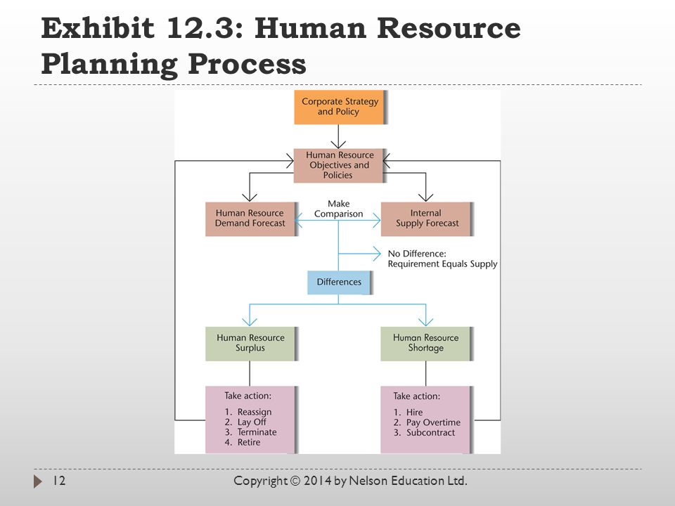 Exhibit 12.3: Human Resource Planning Process