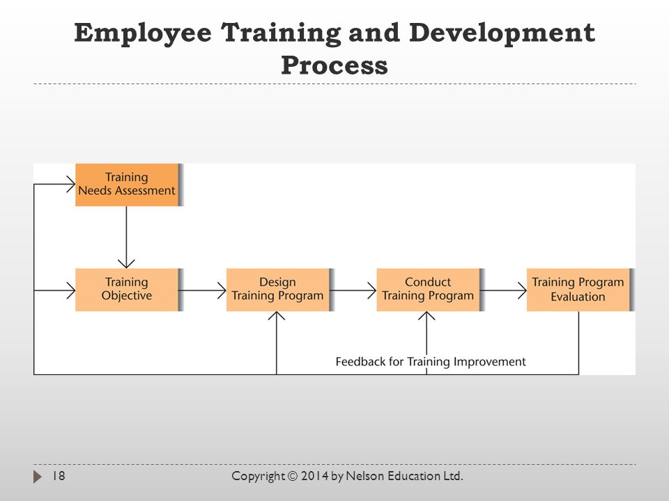 Employee Training and Development Process