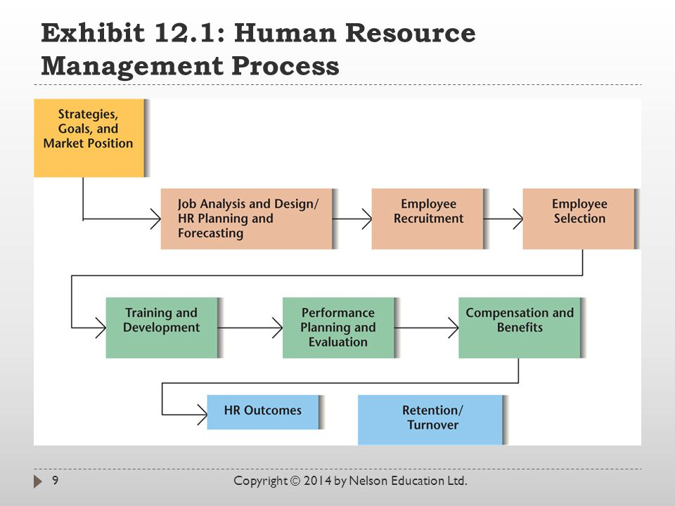 Exhibit 12.1: Human Resource Management Process