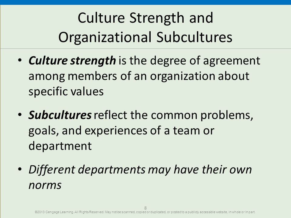 Culture Strength and Organizational Subcultures