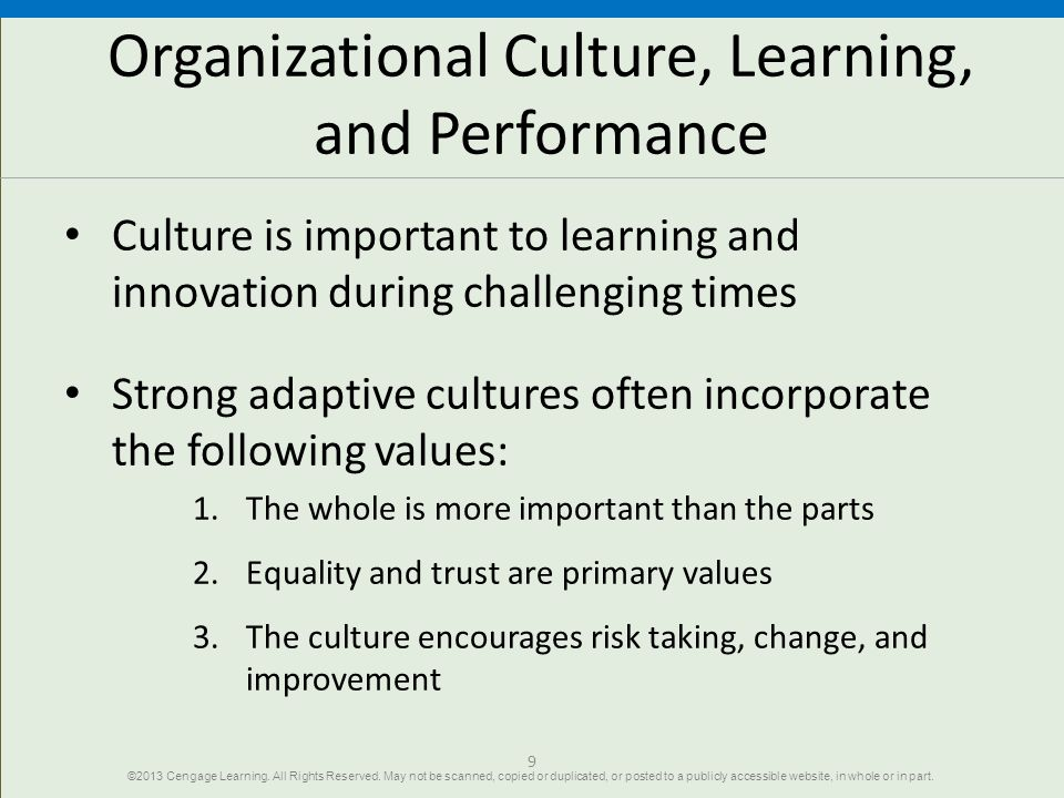 Organizational Culture, Learning, and Performance