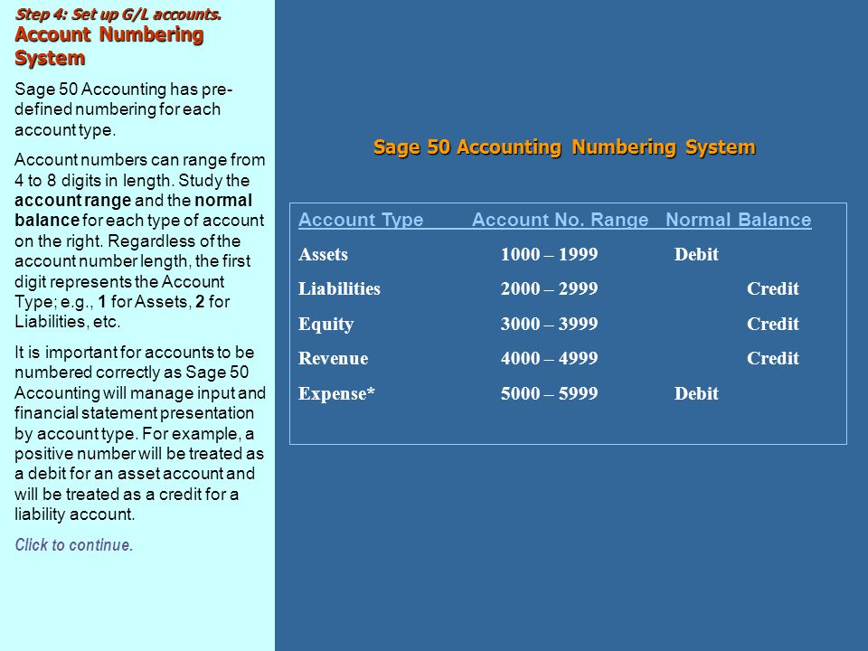 Sage 50 Accounting Numbering System