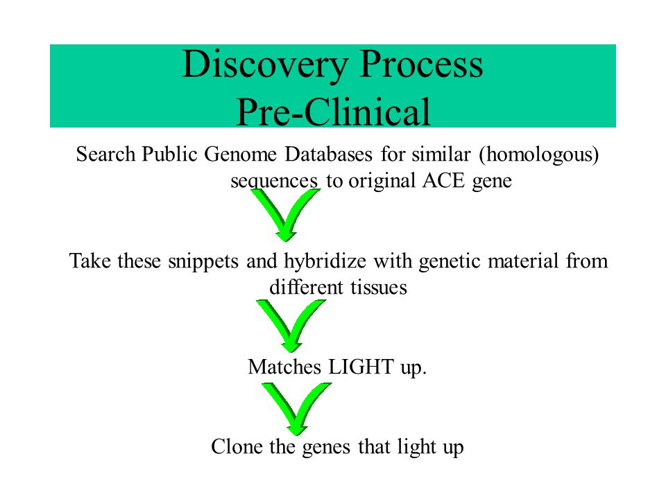Discovery Process Pre-Clinical