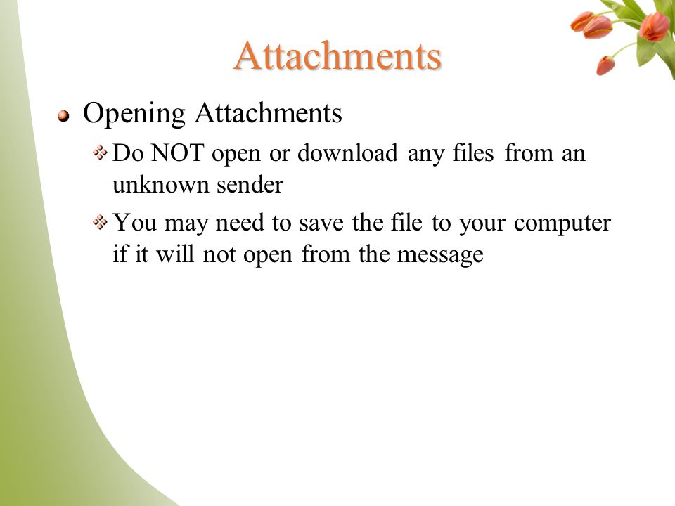 Goodbye Snail Mail, Hello - ppt video online download