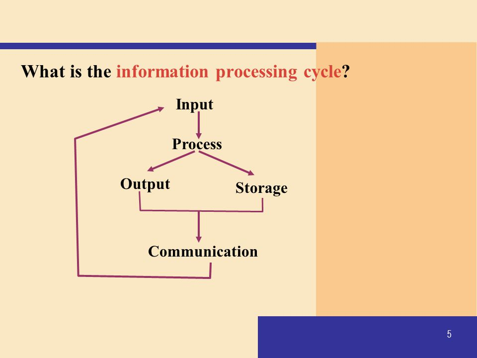 What is the information processing cycle