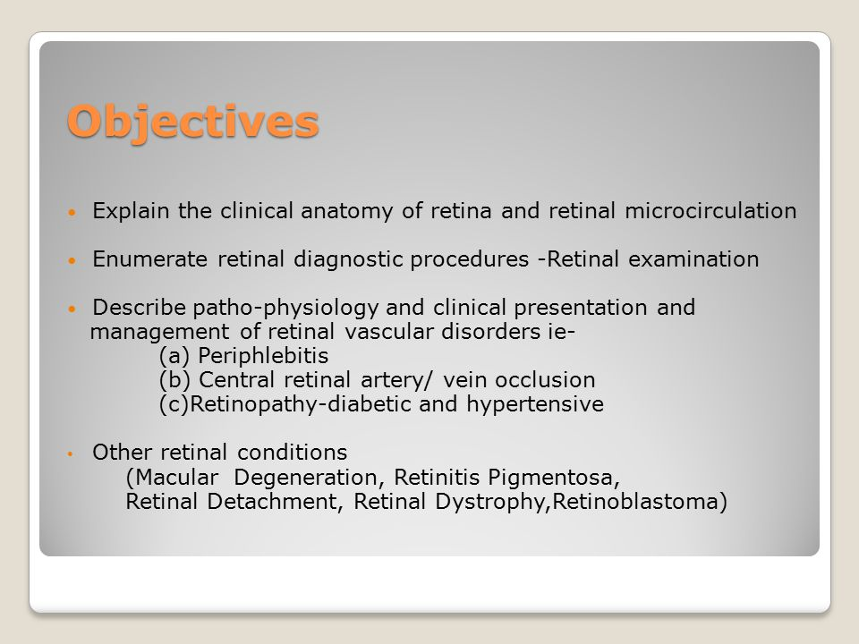 Old Fashioned Retina Anatomy Ppt Collection - Anatomy And Physiology ...