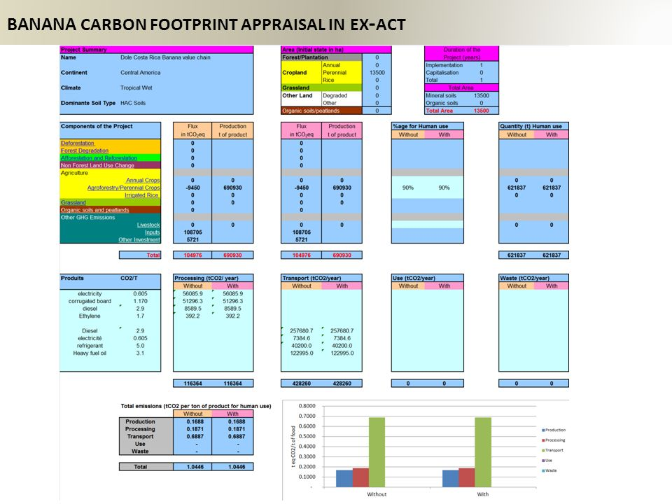 BANANA carbon footprint appraisal in ex-act