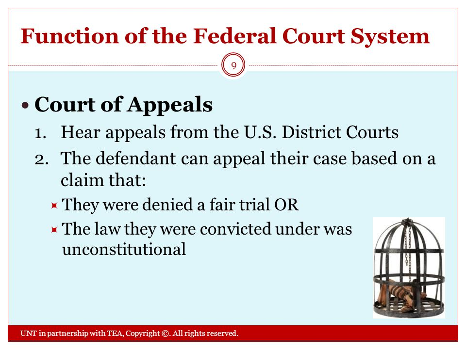 Function of the Federal Court System