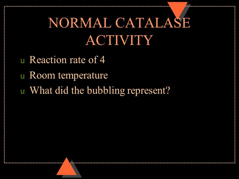 NORMAL CATALASE ACTIVITY