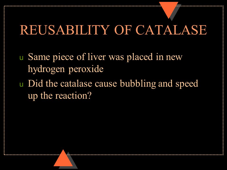 REUSABILITY OF CATALASE