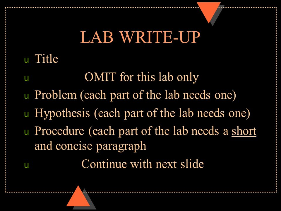 LAB WRITE-UP Title OMIT for this lab only