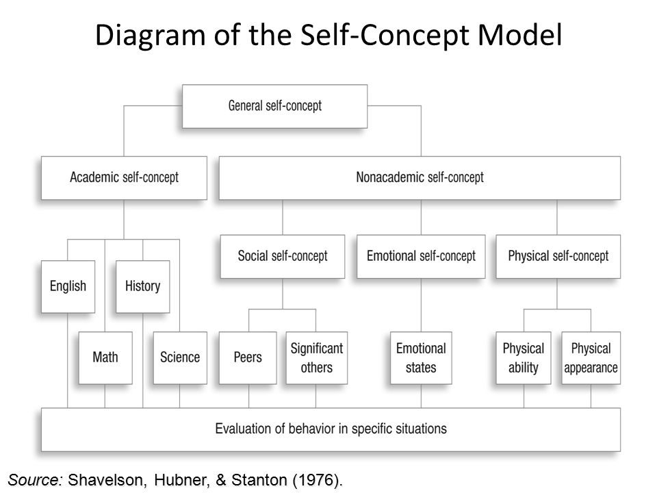 lesson 1 self concept vs self An individuals overall feeling of self-worth or the emotional appraisal of self concept related to the persons evaluation of their effectiveness at school, within family, and in social settings relationship between a persons ideal self and actual self.