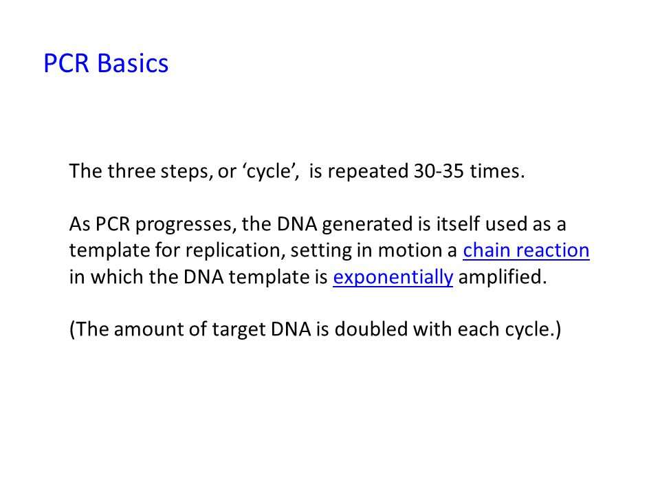 PCR Basics The three steps, or 'cycle', is repeated times.